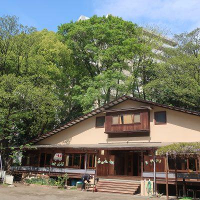 新緑に囲まれた園舎